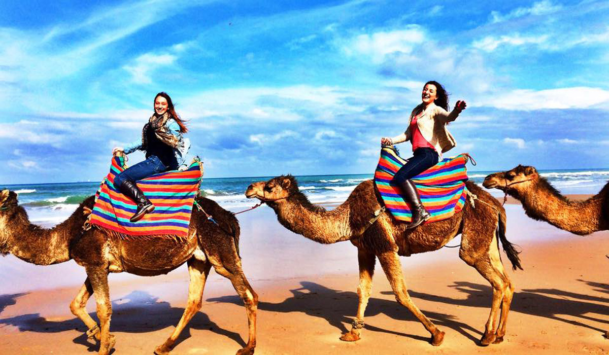 Students riding camels on the beach.